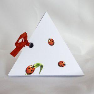coccinelle jolie boite pyramide coté raphia rouge